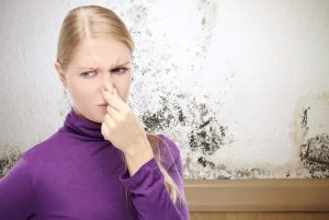 hvac san marcos, air conditioner repair new braunfels, how to get rid of that musty smell